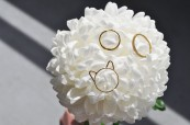 Choupette kitten ring by Foe and Dear and stacking rings by White Feather Designs; image copyright Erin Torrance